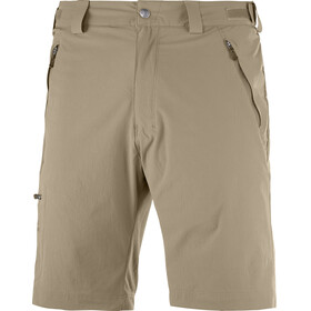 Salomon Wayfarer - Pantalones cortos Hombre - beige